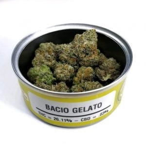 Bacio Gelato weed for sale
