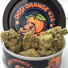 Dosi orange